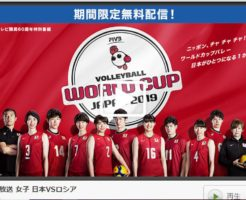 worldcup_volleyball